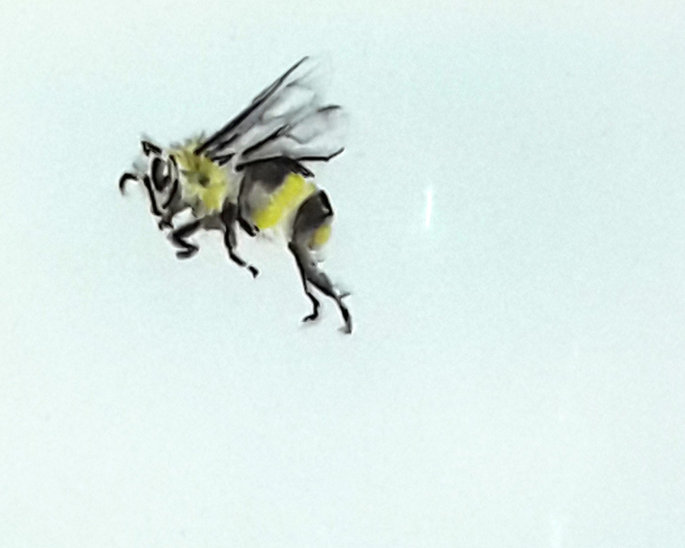 A watercolor and pen drawing of a bee 3 by artsydee