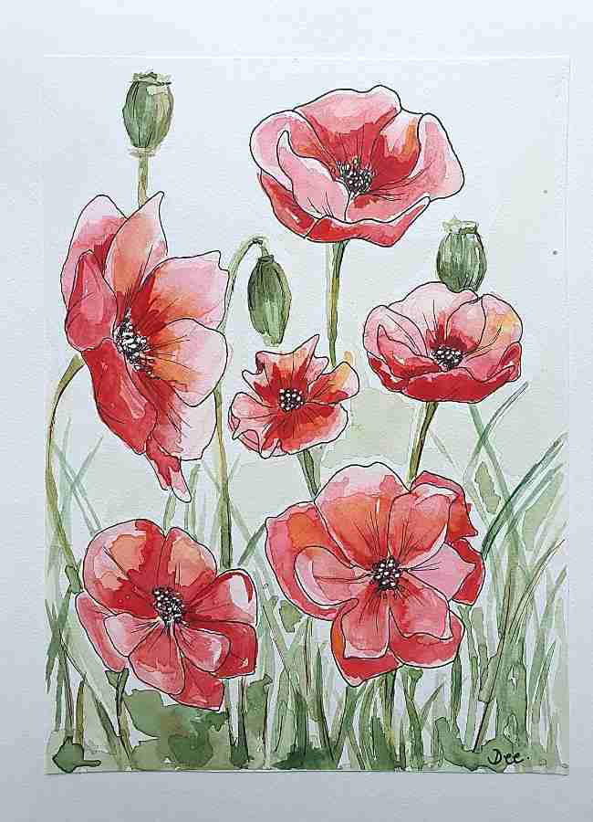 Painting of poppies in watercolor and pen by Dee Maene
