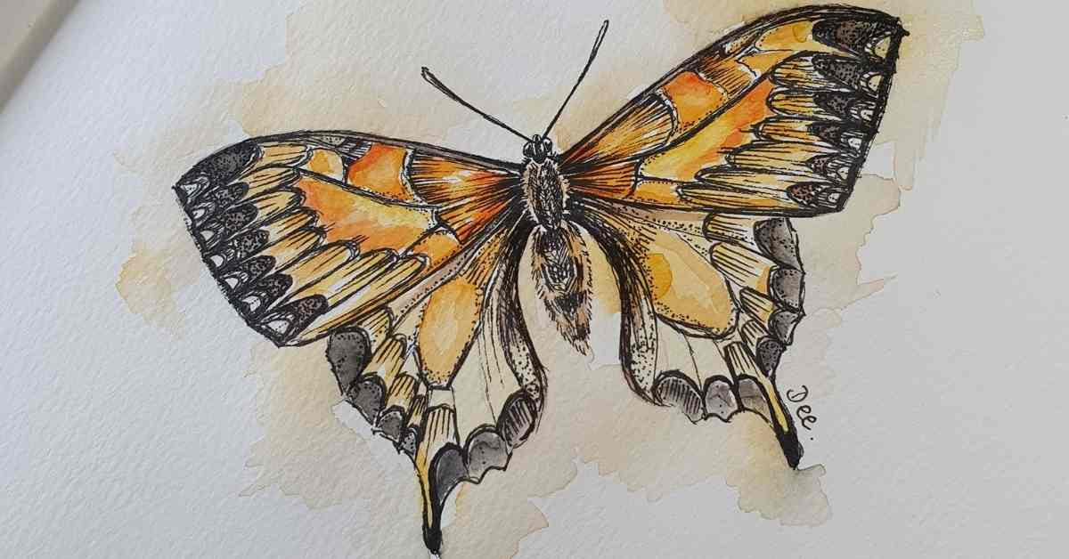 a butterfly painting to demonstrate how to draw a butterfly