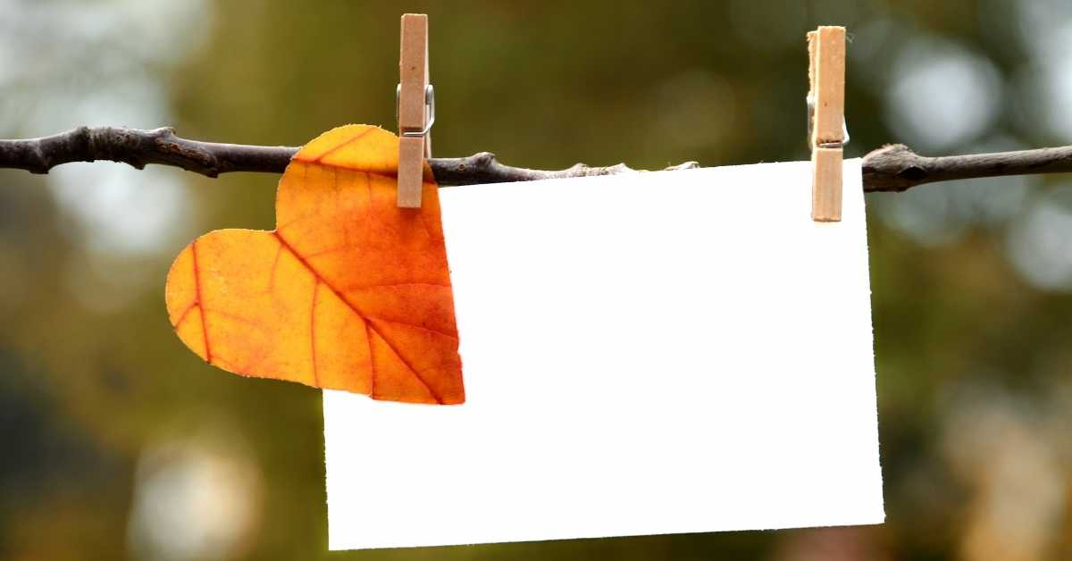 a fall leaf clipped to a piece of paper demonstrating fall things to draw